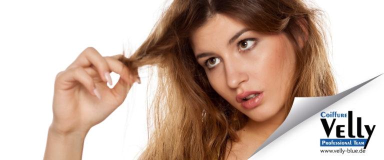 Repair-Shampoos für strapazierte Haare 